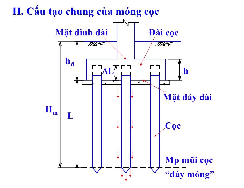 cau-tao-mong-coc
